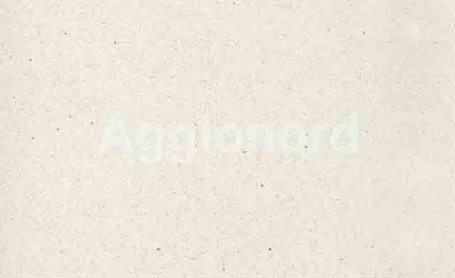 AQ-Stone Microchip